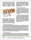 0000077209 Word Templates - Page 4