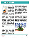 0000077215 Word Template - Page 3