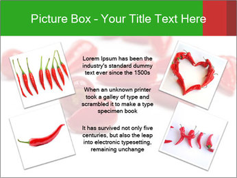 0000077220 PowerPoint Template - Slide 24