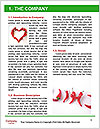 0000077220 Word Template - Page 3