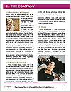 0000077234 Word Template - Page 3