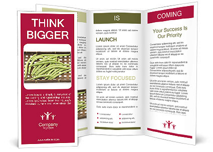 0000077237 Brochure Templates