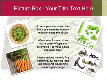 0000077237 PowerPoint Templates - Slide 24