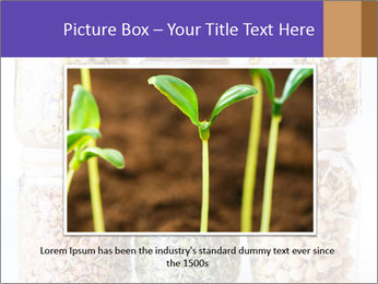 0000077243 PowerPoint Template - Slide 15