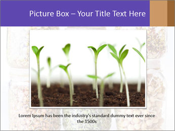 0000077243 PowerPoint Template - Slide 16