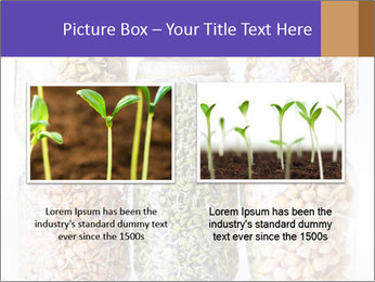0000077243 PowerPoint Template - Slide 18
