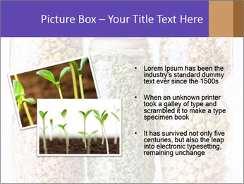 0000077243 PowerPoint Template - Slide 20