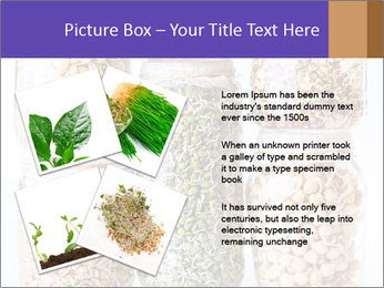 0000077243 PowerPoint Template - Slide 23