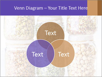 0000077243 PowerPoint Template - Slide 33