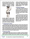 0000077247 Word Templates - Page 4