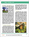 0000077254 Word Template - Page 3