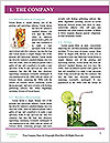 0000077258 Word Template - Page 3