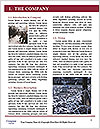 0000077264 Word Template - Page 3