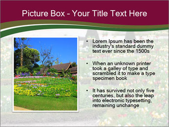 0000077269 PowerPoint Templates - Slide 13