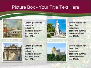 0000077269 PowerPoint Templates - Slide 14