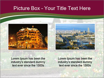 0000077269 PowerPoint Templates - Slide 18