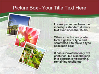 0000077272 PowerPoint Template - Slide 17