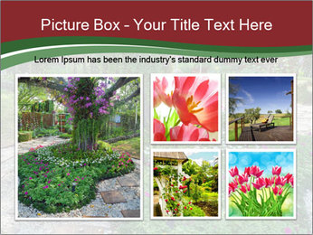 0000077272 PowerPoint Template - Slide 19