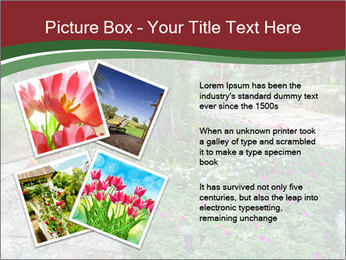 0000077272 PowerPoint Template - Slide 23