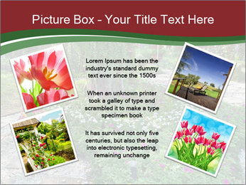 0000077272 PowerPoint Template - Slide 24