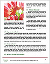 0000077272 Word Template - Page 4