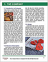 0000077274 Word Template - Page 3