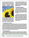 0000077274 Word Template - Page 4