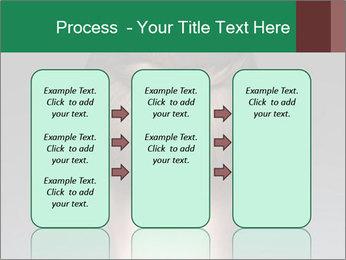 0000077276 PowerPoint Template - Slide 86