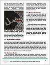 0000077278 Word Templates - Page 4