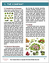 0000077282 Word Templates - Page 3