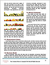 0000077282 Word Templates - Page 4