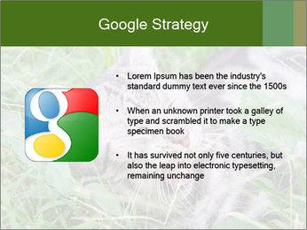 0000077284 PowerPoint Templates - Slide 10