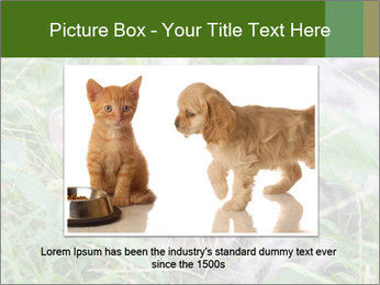 0000077284 PowerPoint Templates - Slide 15