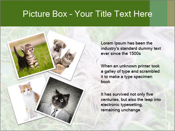 0000077284 PowerPoint Templates - Slide 23