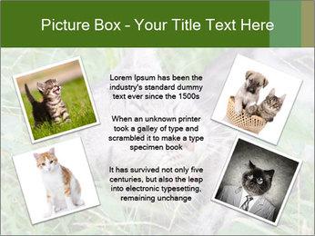 0000077284 PowerPoint Templates - Slide 24