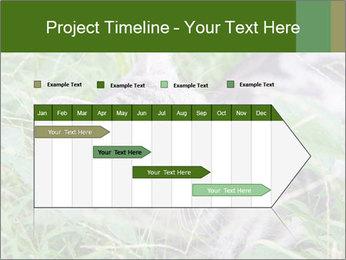 0000077284 PowerPoint Templates - Slide 25