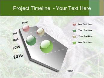 0000077284 PowerPoint Templates - Slide 26