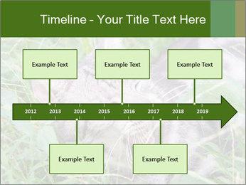0000077284 PowerPoint Templates - Slide 28