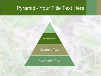 0000077284 PowerPoint Templates - Slide 30
