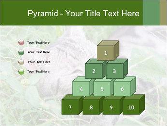 0000077284 PowerPoint Templates - Slide 31