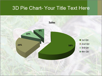 0000077284 PowerPoint Template - Slide 35