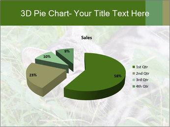 0000077284 PowerPoint Templates - Slide 35