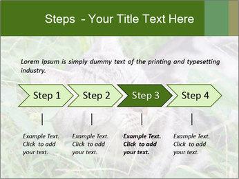 0000077284 PowerPoint Templates - Slide 4