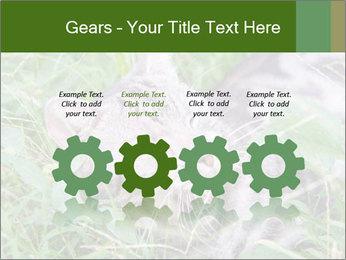 0000077284 PowerPoint Templates - Slide 48