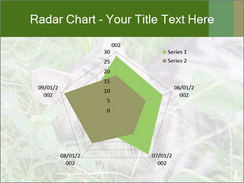 0000077284 PowerPoint Template - Slide 51