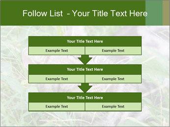 0000077284 PowerPoint Templates - Slide 60