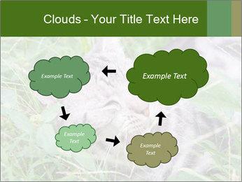0000077284 PowerPoint Templates - Slide 72