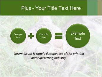 0000077284 PowerPoint Template - Slide 75