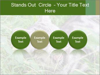 0000077284 PowerPoint Templates - Slide 76