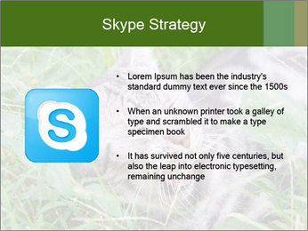 0000077284 PowerPoint Templates - Slide 8
